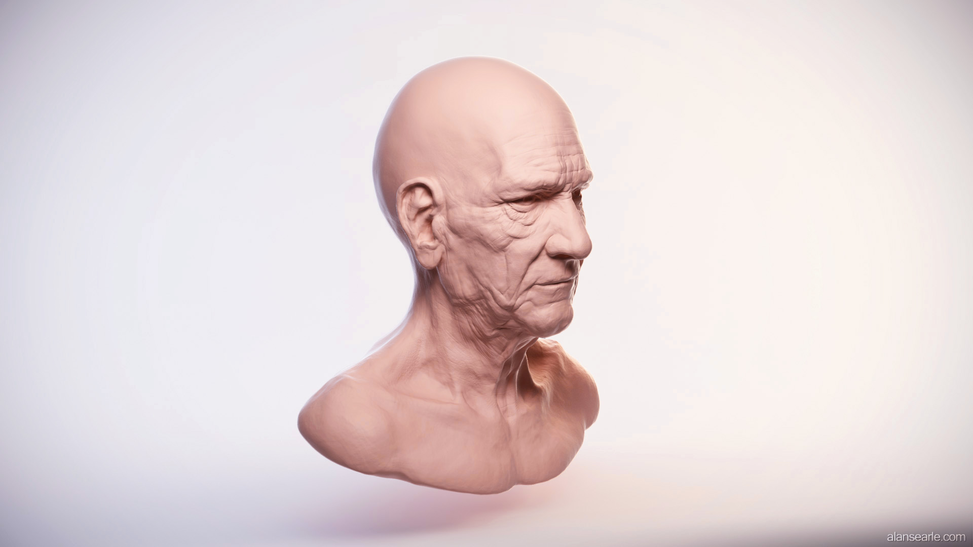 Head Sculpt